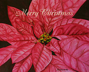 Marna Edwards Flavell - Christmas Poinsettia