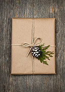 Tied Framed Prints - Christmas present  Framed Print by Elena Elisseeva