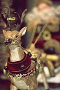 Daliya Photography - Christmas Reindeer