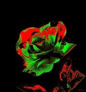 Christmas Rose Print by Annie Zeno