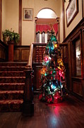 Marilyn Wilson - Christmas Tree at Royal...