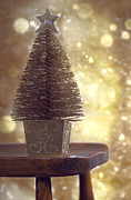 Bottle Brush Metal Prints - Christmas Tree Metal Print by Christopher and Amanda Elwell