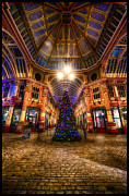D700 Originals - Christmas Tree HDR 01 by Jack Torcello