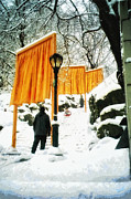 Installation Art Prints - Christo - The Gates - Project for Central Park in snow Print by Nishanth Gopinathan