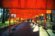 Installation Art Prints - Christo - The Gates - Project for Central Park Print by Nishanth Gopinathan