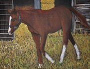 Colts Paintings - Chronoflights Home by Reb Frost