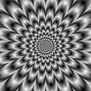 Optical Illusion Art - Chrysanthemum in Black and White by Colin  Forrest