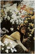 Jacques Framed Prints - Chrysanthemums Framed Print by James Jacques Joseph Tissot
