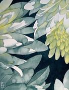 Chrysanthemums Print by Robert Hooper