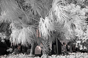 South Carolina Infrared Landscape Framed Prints - Church of the Cross Framed Print by Bruce Siulinski