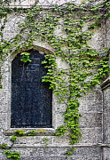 Color Green Posters - Church Window with Ivy Textured Poster by Linda Phelps