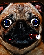 Cute Dog Digital Art Prints - Cigar Puffing Pug - Electric Art Print by Wingsdomain Art and Photography