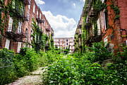 Dilapidated Houses Prints - Cincinnati Glencoe-Auburn Place Picture Print by Paul Velgos