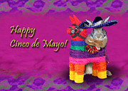 Donkey Digital Art - Cinco de Mayo Bunny Rabbit by Jeanette Kabat
