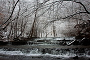 Hallmark Metal Prints - Cinderella Falls in Winter Metal Print by Rachel Hallmark