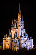 Illuminated Photo Posters - Cinderellas Castle in Magic Kingdom Poster by Adam Romanowicz