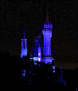 Cinderellas Castle Prints - Cinderellas Night Print by David Lee Thompson