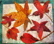 Contemporary Mixed Media - Circle Of Leaves by Bellesouth Studio
