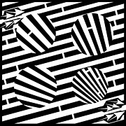 Optical Illusion Drawings - Circles Illusion Maze by Yonatan Frimer Maze Artist