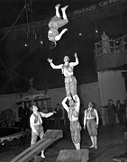 Ringling Brothers Posters - Circus Acrobats Practicing Poster by Underwood Archives