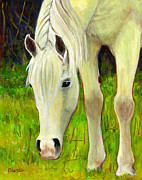Original Horse Art Paintings - Cisco Sees Horse Art by Blenda Studio