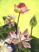 Green Florals Prints - Citron Lotus 1 Print by Debbie DeWitt