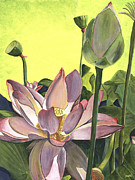 Green Florals Prints - Citron Lotus 2 Print by Debbie DeWitt