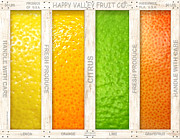 Citrus Fruit Posters - Citrus Poster by Cristophers Dream Artistry