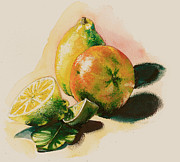 Fresh Vegetables Painting Posters - Citrus under the Sun Light Poster by Alessandra Andrisani