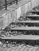 Downtown Stairs Metal Prints - City Steps 3 Metal Print by Angelina Vick