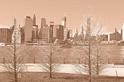 New York City Skyline Digital Art Posters - City Trees Poster by Dan Hilsenrath
