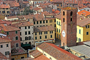 Rooftop Framed Prints - City View of Lucca with the Clock Tower Framed Print by Kiril Stanchev