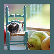Mice Photo Posters - Claras Favorite Chair Poster by Theresa Tahara