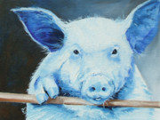 Pig Paintings - Clarence Wants Dinner by Diane Kraudelt