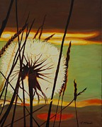 Bulrushes Prints - Clarity of Light Print by Janet McDonald