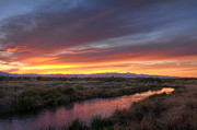 Eddie Yerkish - Clark County Wetlands...