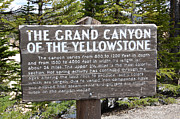 Beauty In Nature Art - Classic Grand Canyon of the Yellowstone Sign Yellowstone National Park by Shawn OBrien
