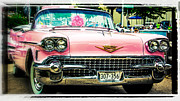Pink Hot Rod Framed Prints - Classic Pink Cadillac Framed Print by Perry Webster