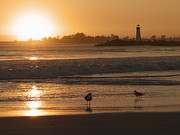 Abbott  Photos - Classic Santa Cruz Sunset by Paul Topp