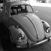 Wingsdomain Art and Photography - Classic Volkswagon Bug DSC1201 Black and White Square