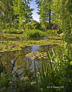 Waterlilies At Giverny Framed Prints - Claude Monets Waterlily Pond at Giverny Framed Print by Allen Sheffield