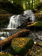 Christopher Fridley Prints - Clayton Creek Print by Christopher Fridley