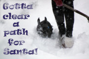 Cathy  Beharriell - Clear a Path for Santa