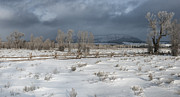 Winter Prints Photos - Clearing Storm in the Tetons by Sandra Bronstein