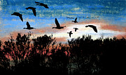 Canadian Geese Pastels - Clearing the Trees by R Kyllo