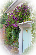 Stockbridge Posters - Clematis Around The Door Poster by Terri  Waters