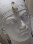 Wetmore Art - Cleopatras face  by Gerald Strine