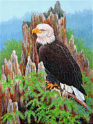 Eagle Cliff Paintings - Cliff Dweller by Nancy L Baker