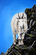 Mountain Goat Painting Prints - Cliffhanger Print by TeshiaArt