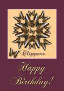 Brown Clipper Posters - Clipper Butterfly Birthday Poster by Melissa A Benson
